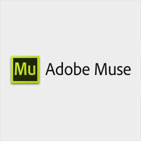 レスポンシブデザインに対応しているAdobe Museを試してみて